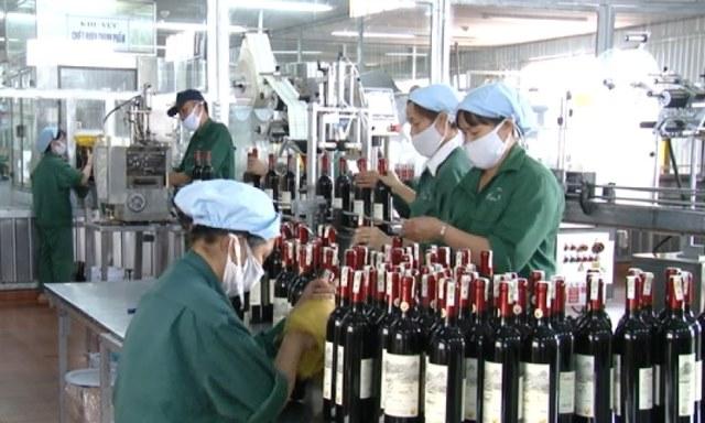 Lâm Đồng nâng cao năng suất, chất lượng sản phẩm, hàng hóa, dịch vụ doanh nghiệp