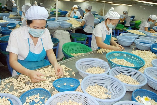 Nâng cao chất lượng, tạo lợi thế cạnh tranh cho các mặt hàng xuất khẩu
